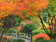 秋季好景图库